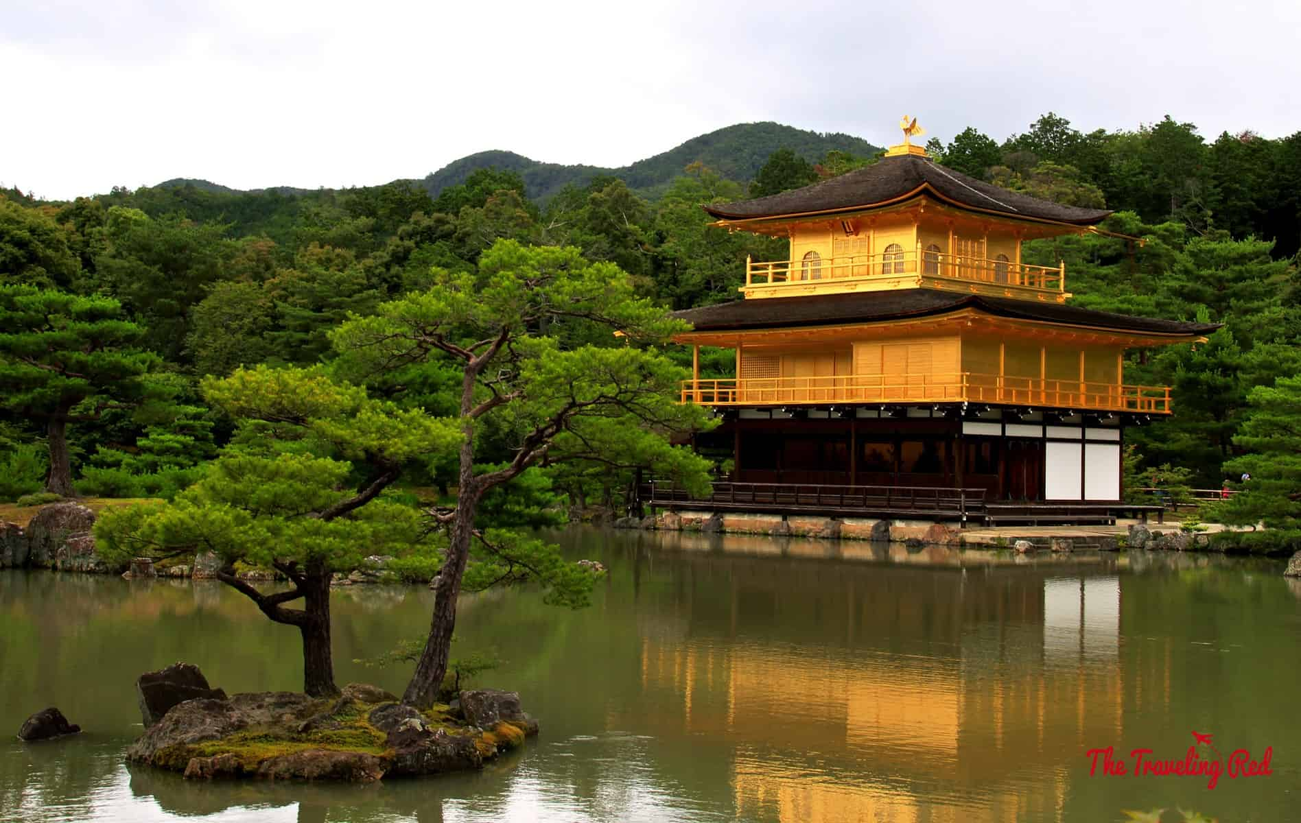 One of the most famous temples in Kyoto is Kinkaku-ju Temple (better known as the Golden Pavilion). This place was beautiful, but super crowded. I would suggest visiting right when it opens. It's an iconic temple in Japan.