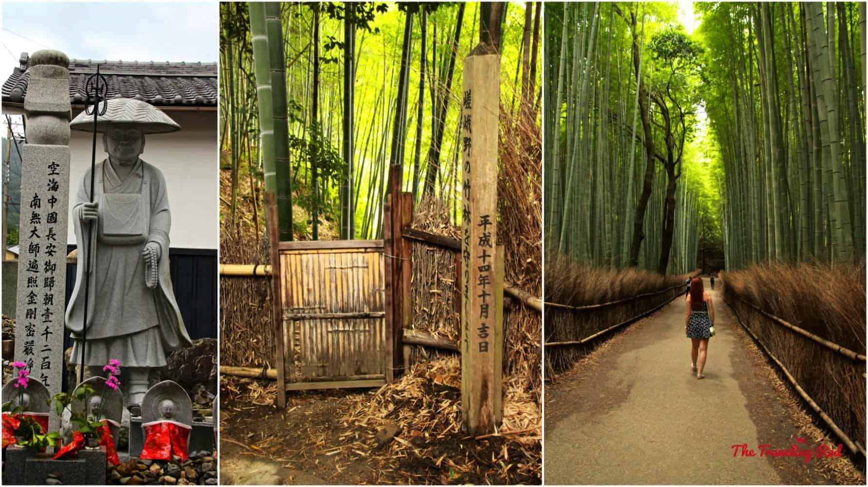 You must see Arashiyama Bamboo Grove when you visit Japan.Make sure to go early to avoid the crowds. The bamboo forestwas incredible. They say that those trees can grow up to 3 feet per day!