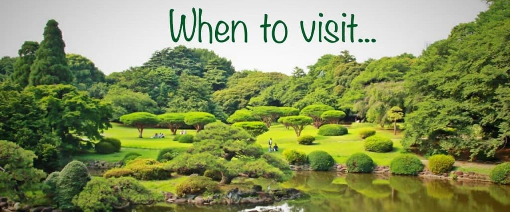 when to visit