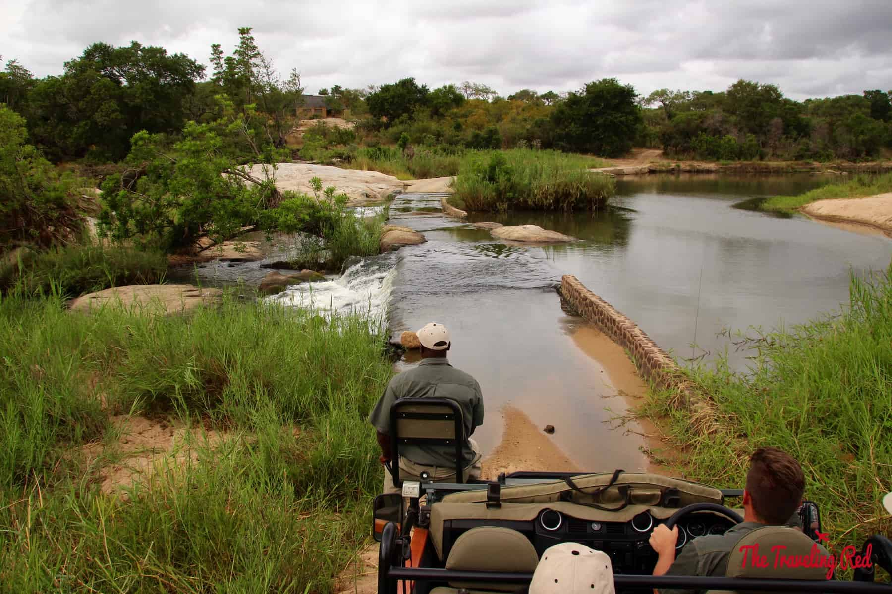 Game drive in South Africa